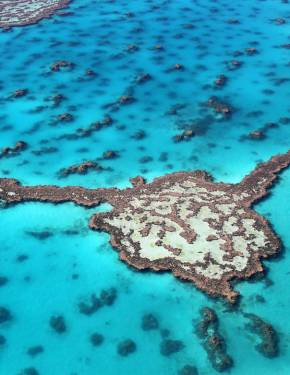 Best time to visit Great Barrier Reef