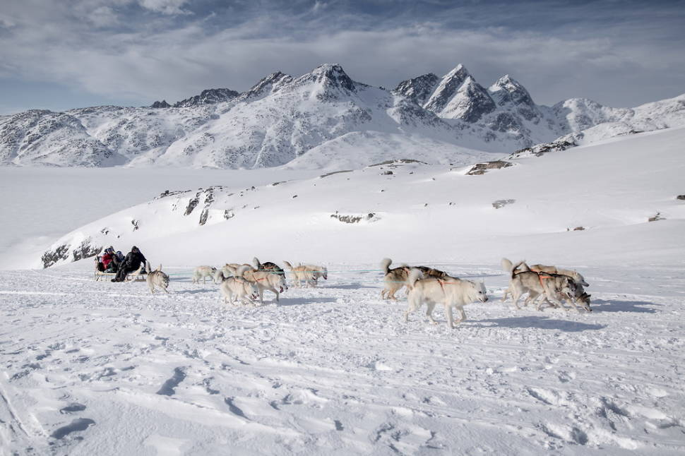 Dog Sledding in Greenland - Best Season
