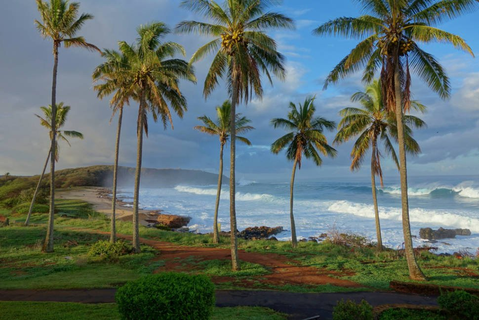 Image result for winter time in Hawaii