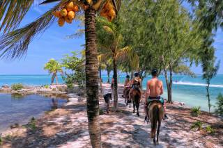 Horseback Riding on Roatán