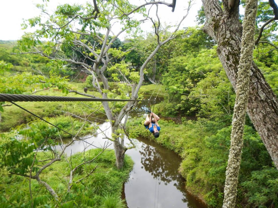 Best time for Ziplining on Roatán in Honduras