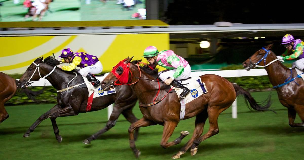 Horse Racing in Hong Kong - Best Time