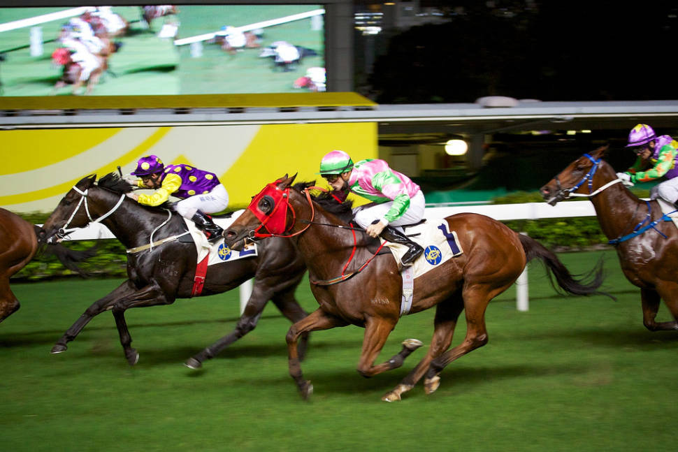 Horse Racing in Hong Kong - Best Time
