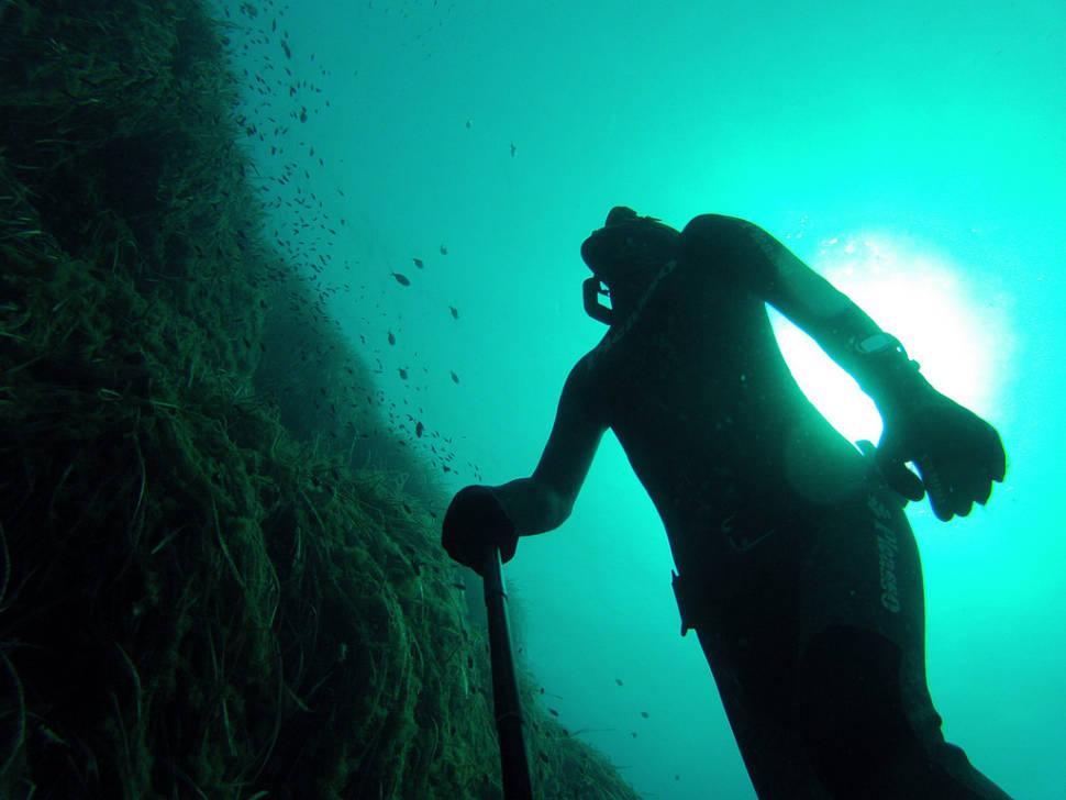 Diving in Ibiza in Ibiza - Best Season