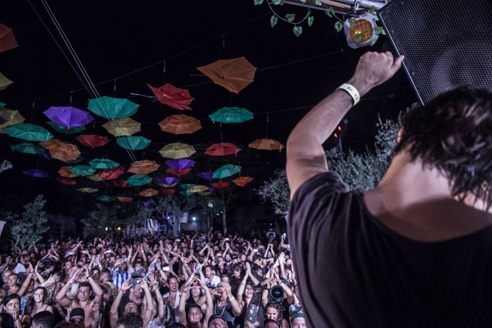 The Zoo Project in Ibiza - Best Time