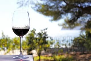 Wine Season and St. Mateu