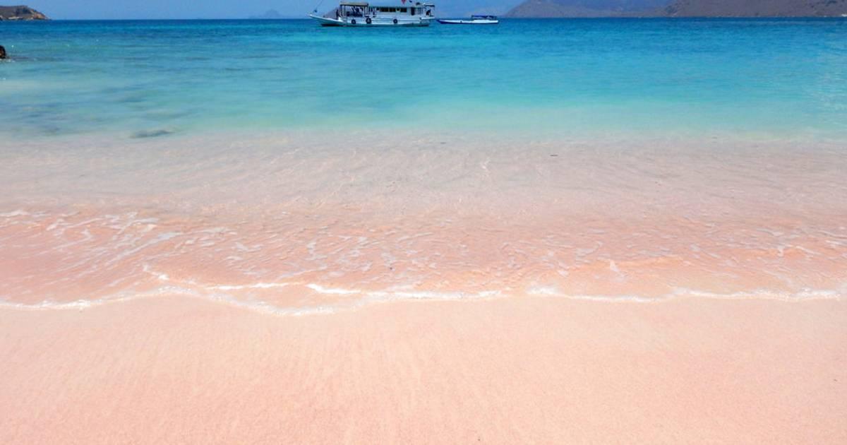 Pink Beach, Komodo Island in Indonesia - Best Time