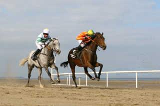 Laytown Beach Races