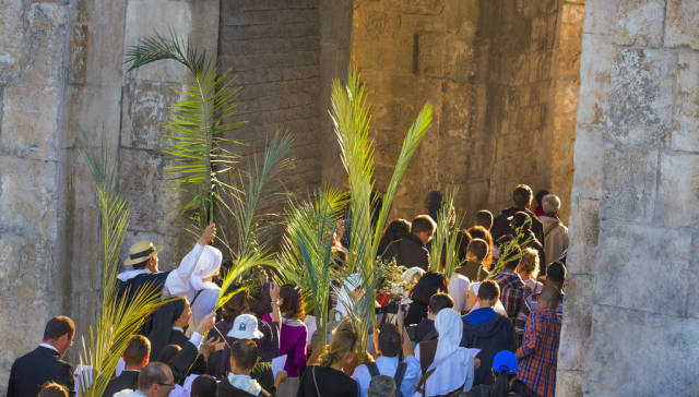Palm Sunday in Israel - Best Time