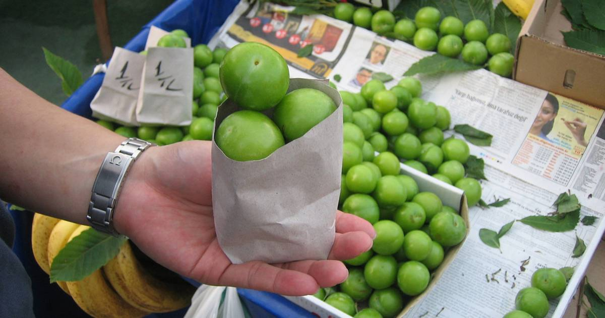 Green Plums or Erik in Istanbul - Best Time