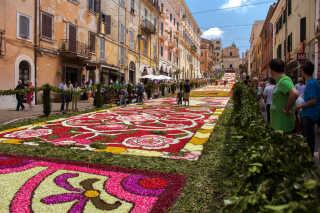 Infiorata Flower Carpet Festivals