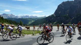 Stelvio Bike Day (Scalata Cima Coppi)