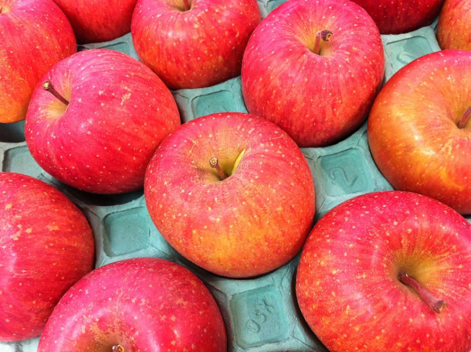 Fuji Apples in Japan - Best Time