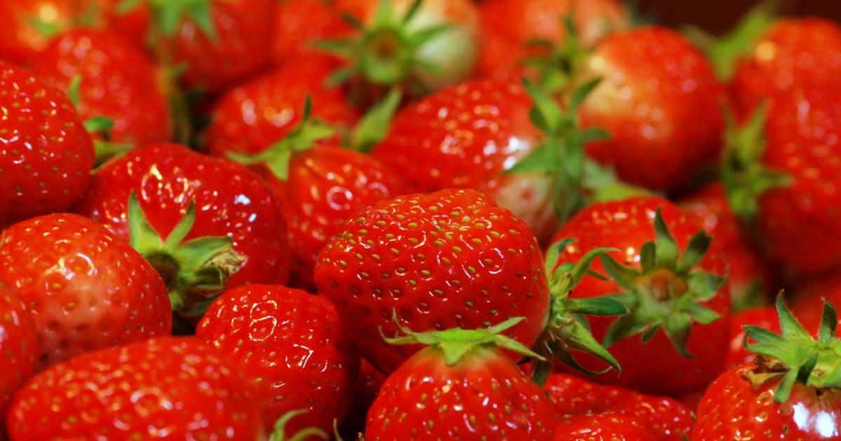 Strawberries in Japan - Best Time