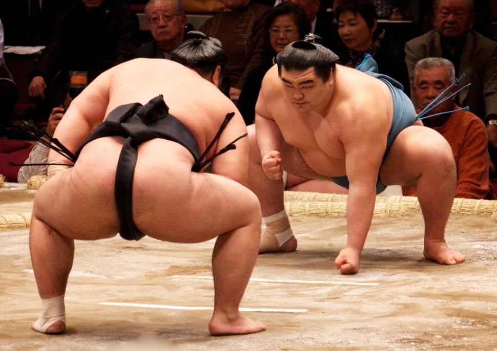 Sumo in Japan - Best Time