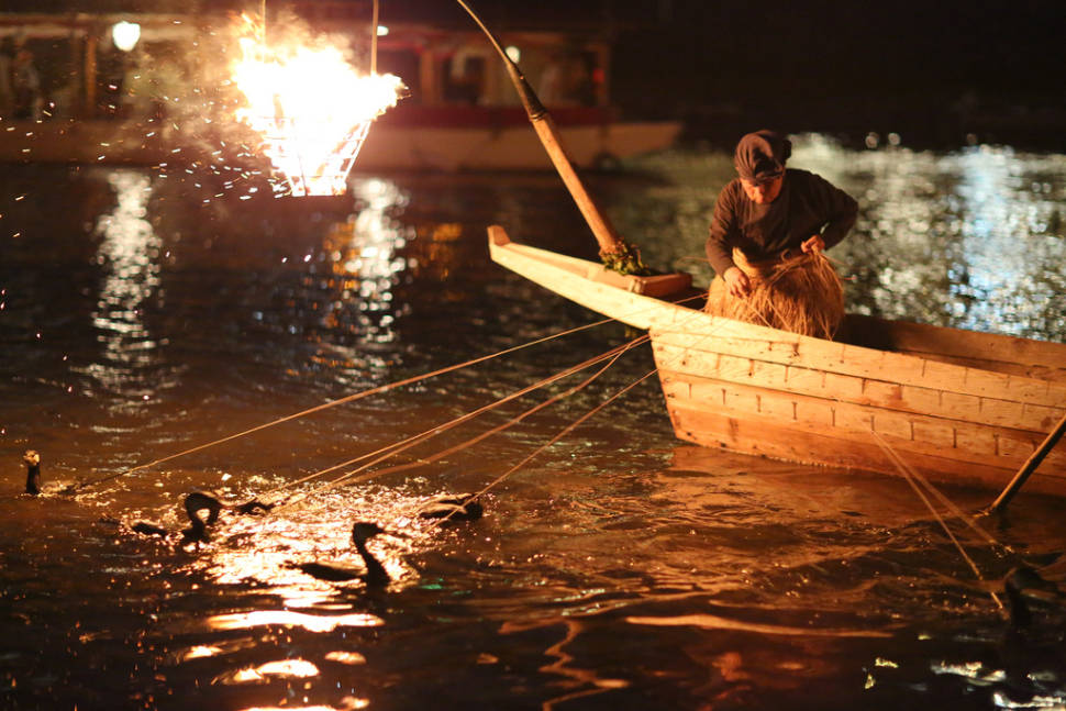 Best time for Cormorant Fishing in Japan