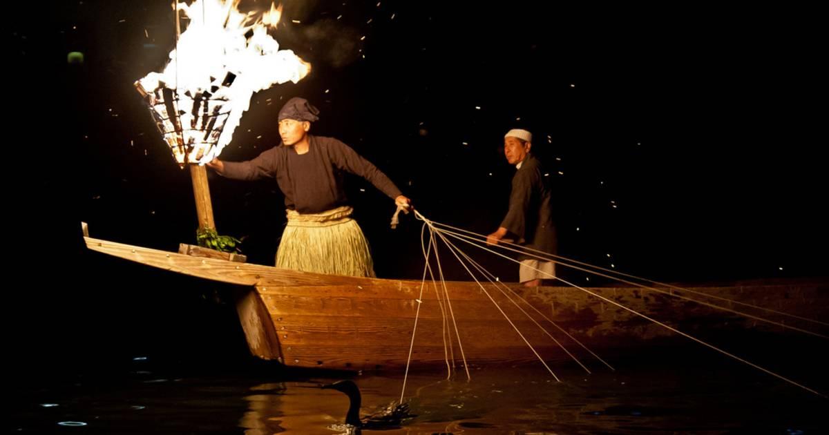 Cormorant Fishing in Japan - Best Time