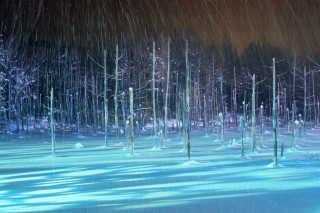 Winter Magic of Biei Blue Pond