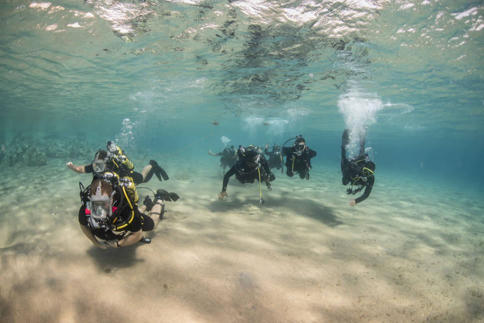 Aqaba Diving in Jordan - Best Time