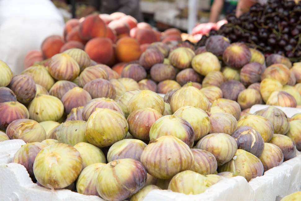 Figs in Jordan - Best Time
