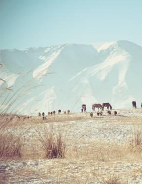 Best time to visit Kazakhstan