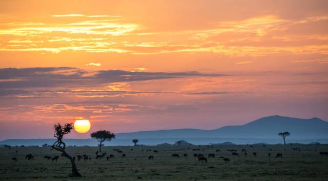 Dry Season in Kenya - Best Time