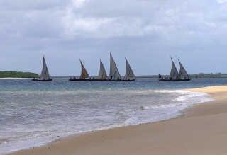 New Year's Lamu Dhow Race