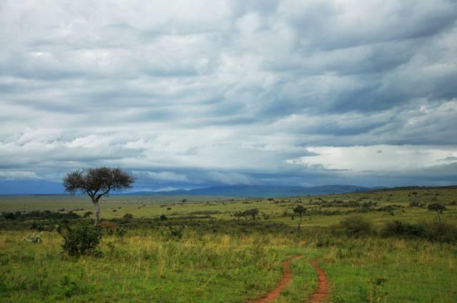 Wet Season in Kenya - Best Season