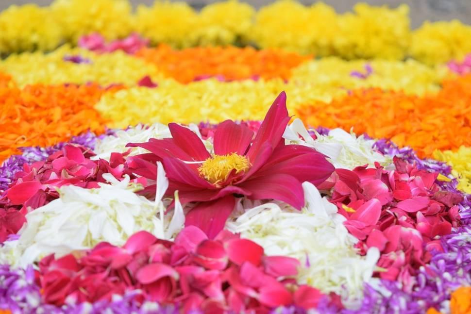 Onam Festival in Kerala - Best Time