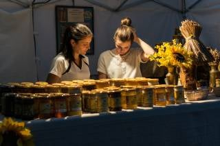 Krakow Honey Harvest – Bee-Keepers Festival