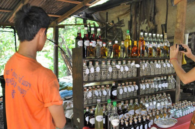 Lao-Lao Whiskey in Laos - Best Season