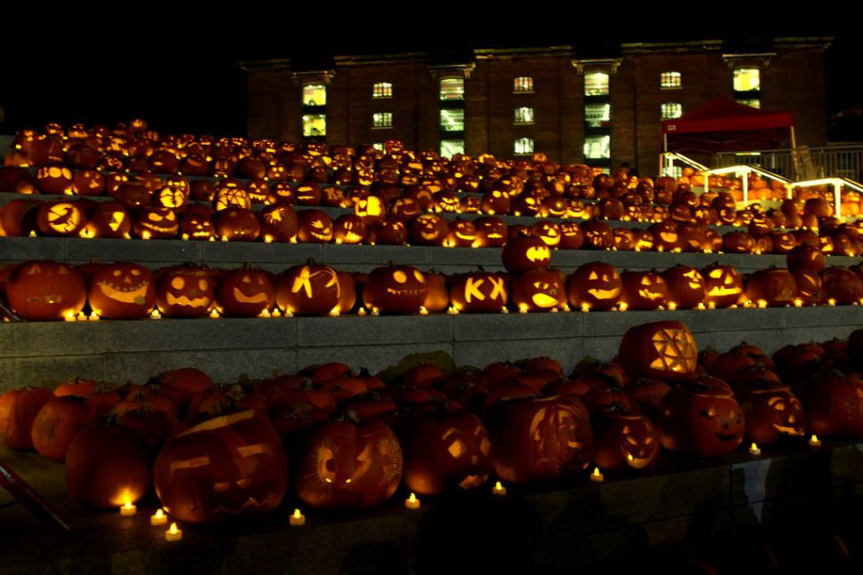 The King's Cross pumpkins by night
