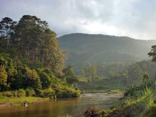 Hot Springs and Waterfalls of Ranomafana National Park