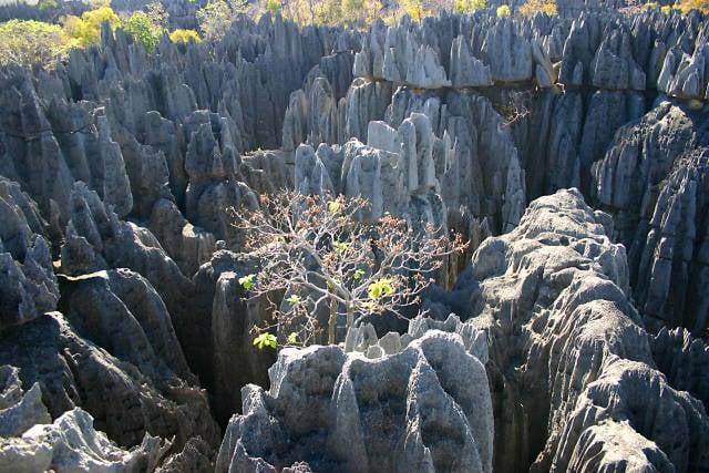 Stone Forest Tsingy de Bemaraha in Madagascar - Best Time