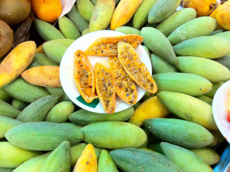 Passionflower Fruit in Madeira - Best Time
