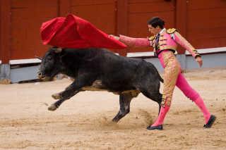 Bullfighting (Corrida de Toros)