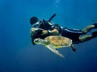 Diving near Borneo Island