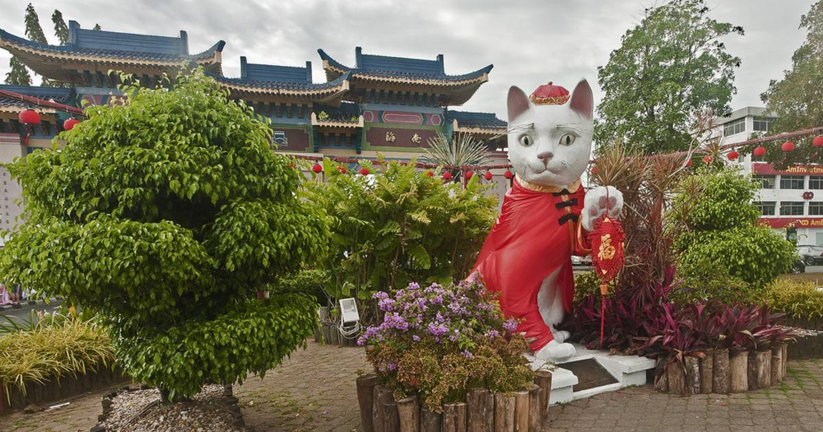 Kuching Cat City in Malaysia - Best Time