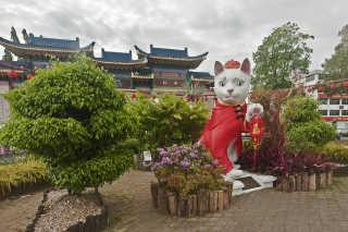 Kuching Cat City