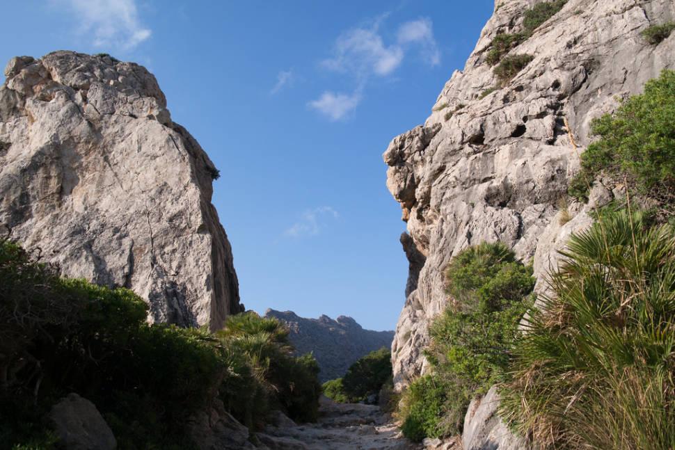 A Walk from Puerto Pollenca to Cala de Boquer