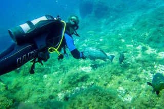 Scuba Diving in Mallorca