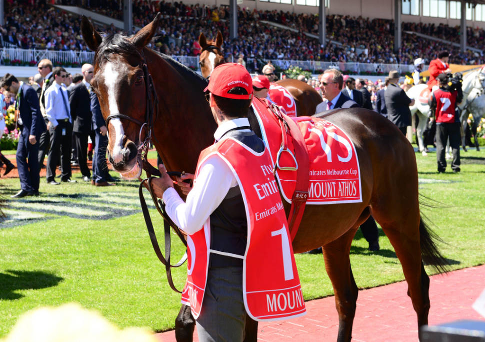 Best time for Melbourne Cup  in Melbourne
