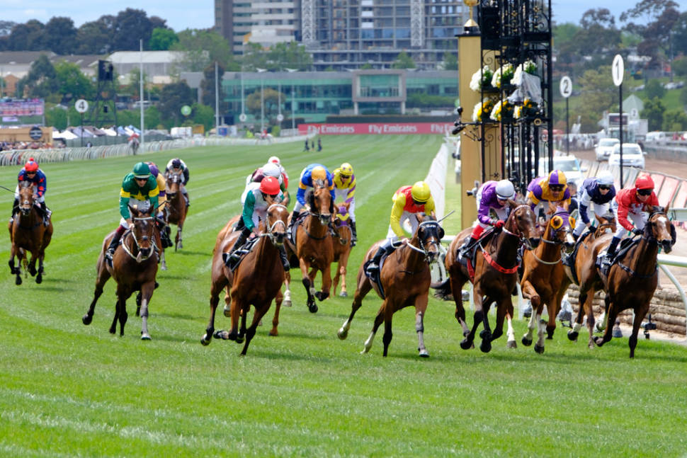 Melbourne Cup  in Melbourne - Best Time