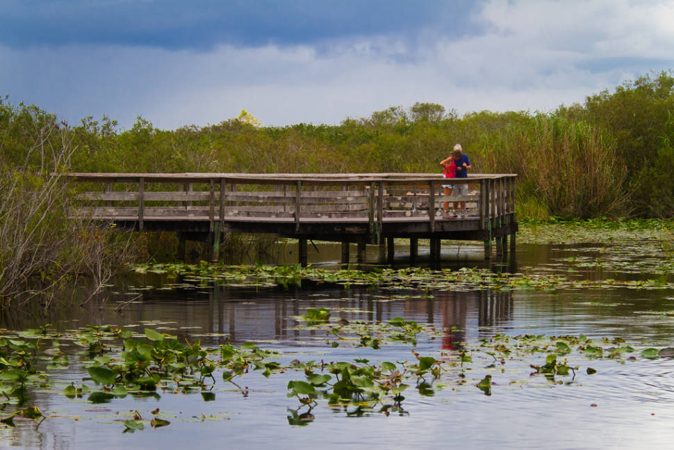 Best time for Everglades Boating Adventure in Miami