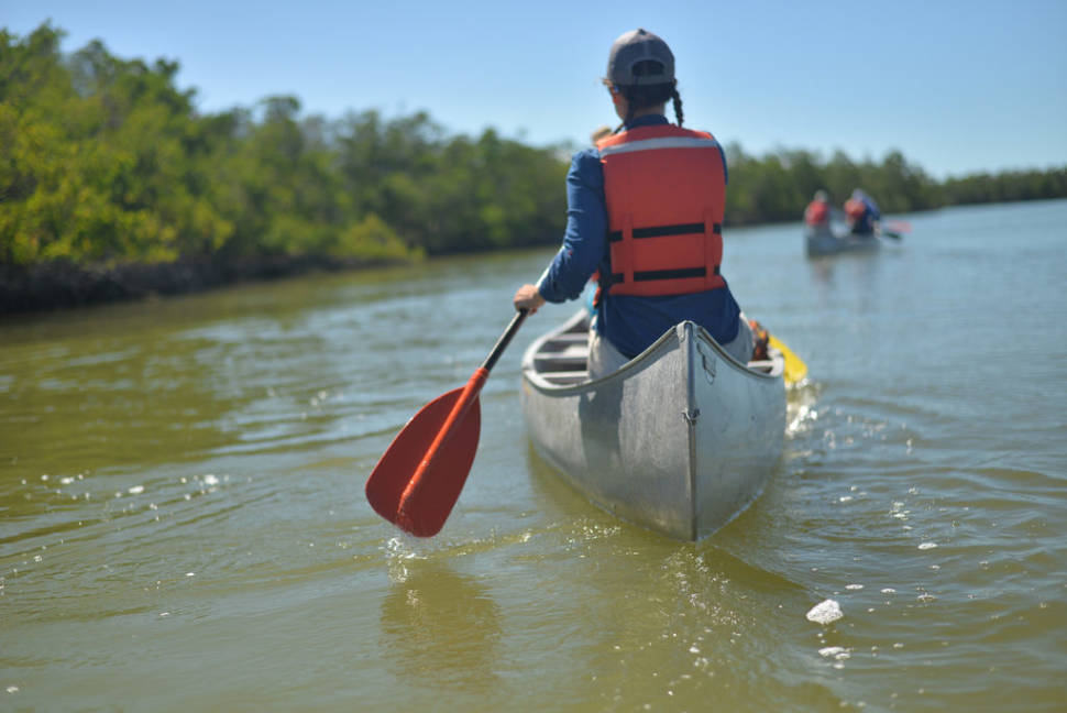 Best time to see Everglades Boating Adventure in Miami