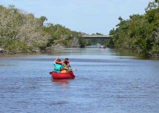Everglades Boating Adventure