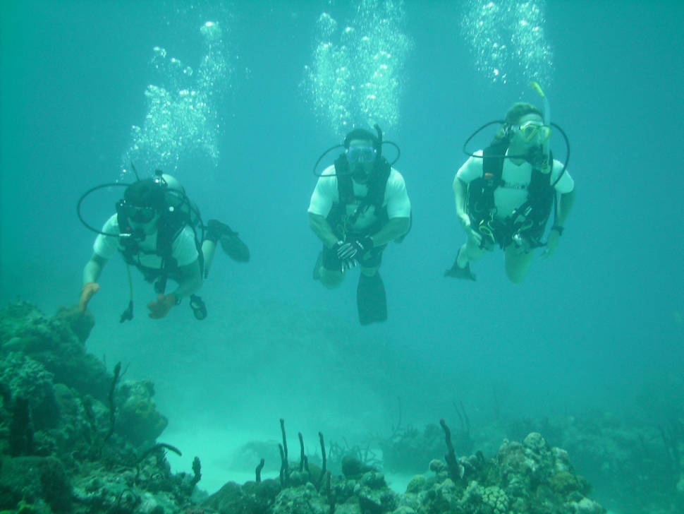 Best time to see Scuba Diving and Snorkeling in Miami