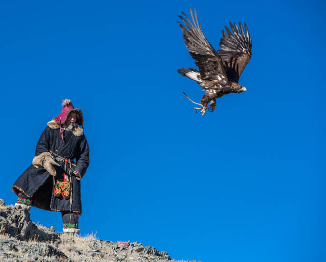 Hunting with Eagles in Mongolia - Best Season