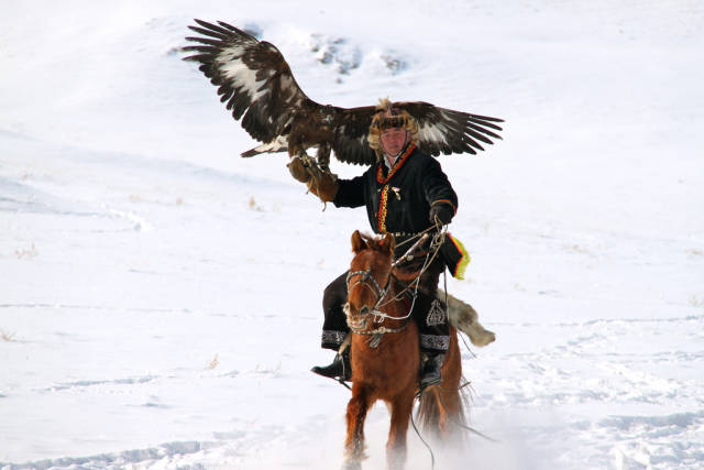 Hunting with Eagles in Mongolia - Best Time