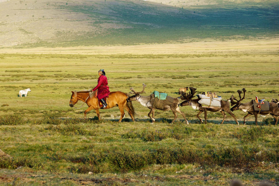 Best time for Visiting Tsaatan Tribe in Mongolia